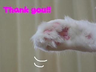 Jill thank you