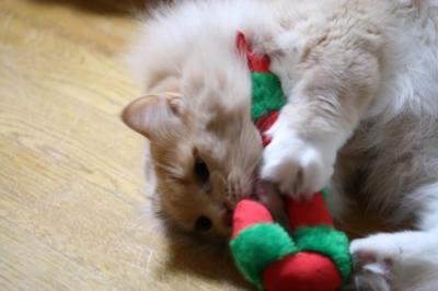 Moca クリスマスのおもちゃ2
