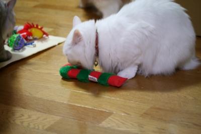 Jill クリスマスのおもちゃ