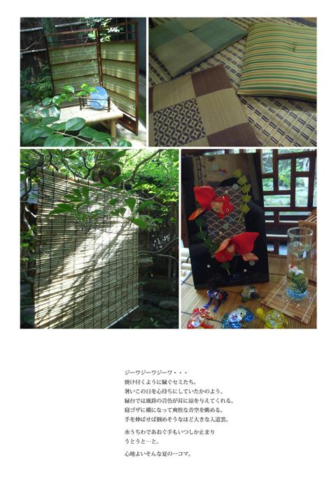 09夏DM(裏)629