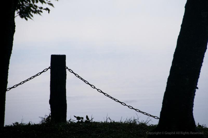090075.jpg