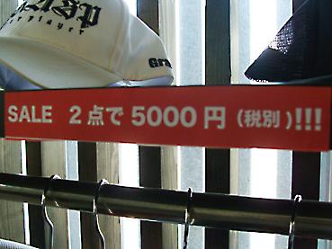 1DSC08209.jpg
