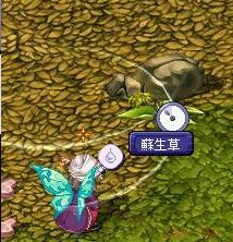 TWCI_2008_2_22_14_38_59.jpg