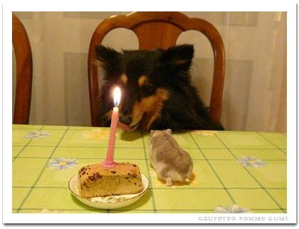 美味しそうなケーキ?