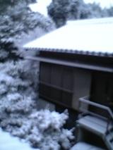 雪どぅあー!!