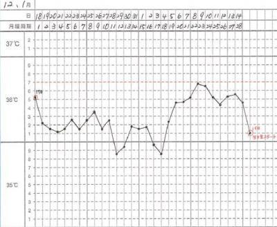 12、1月基礎体温