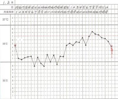 1,2月基礎体温