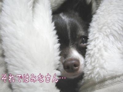 コピー (5) ~ yuki1
