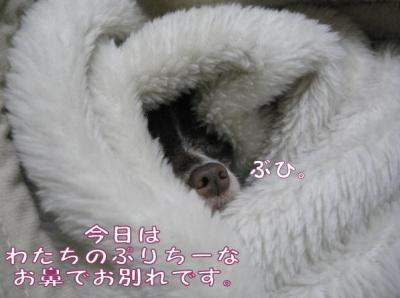 コピー (6) ~ yuki1