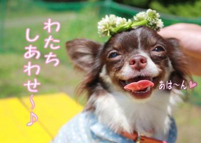 コピー (3) ~ コピー ~ yuki1