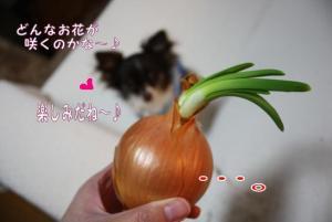 コピー (4) ~ 得意