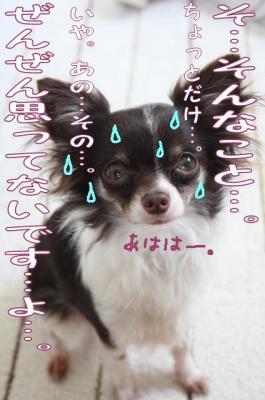 コピー (3) ~ 風邪