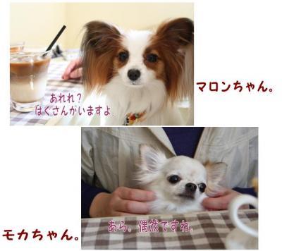 コピー (4) ~ H
