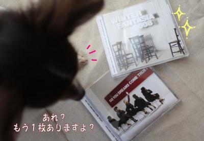 コピー ~ ドリ