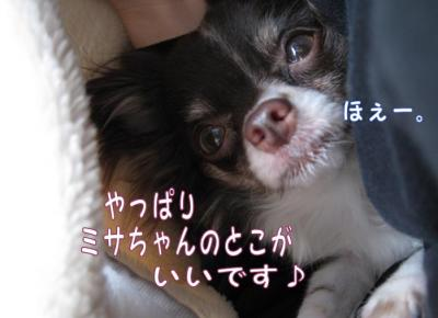コピー (4) ~ お昼寝