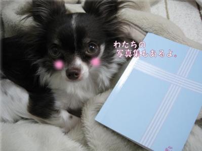 コピー (3) ~ アルバム