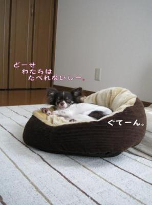コピー (4) ~ チョコクランチ