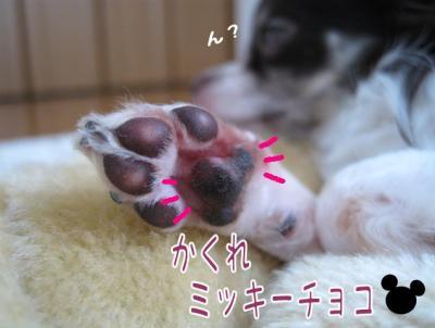 コピー (5) ~ チョコクランチ