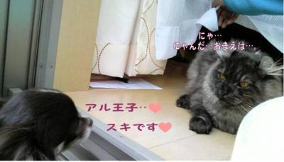 コピー ~ 初恋1