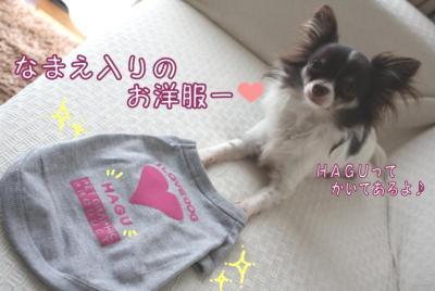 コピー (10) ~ ショコ便