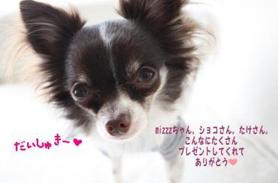 コピー (13) ~ ショコ便