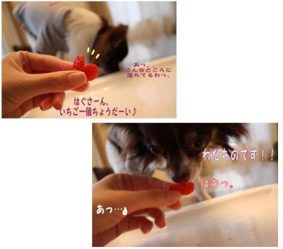 コピー (4) ~ お誕生日