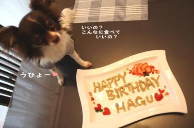 コピー ~ お誕生日