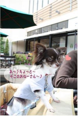コピー (4) ~ 横浜
