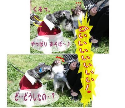 コピー (3) ~ ゆめ牧場
