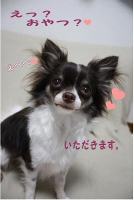 コピー (10) ~ 招待状