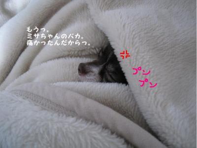 コピー (9) ~ 招待状
