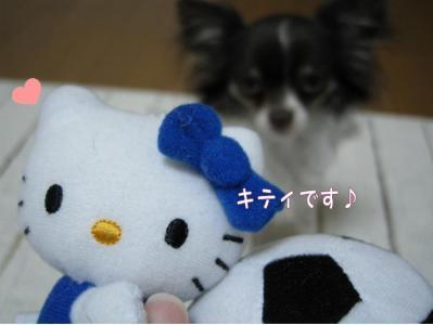 コピー (3) ~ GW