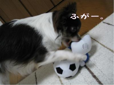 コピー (4) ~ GW