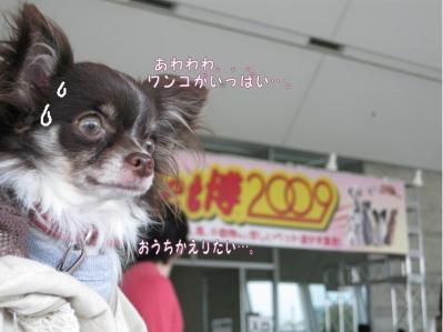 コピー ~ GW