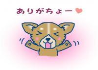 コピー (6) ~ 寝ドコ