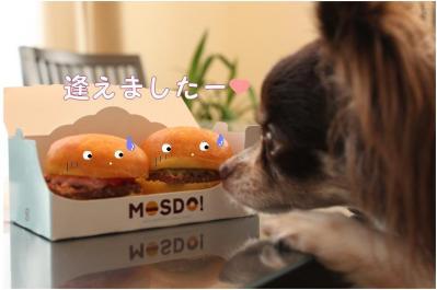 コピー (2) ~ モスド