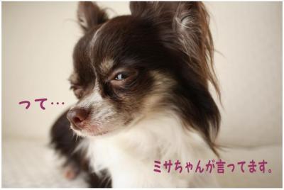 コピー (5) ~ モスド