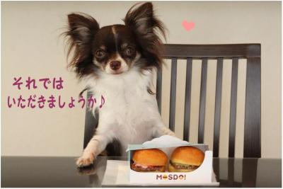 コピー (3) ~ モスド