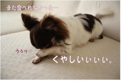 コピー (6) ~ モスド