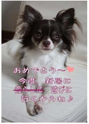 コピー (11) ~ Wedding
