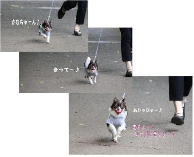 コピー (2) ~ 公園