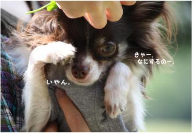 コピー (6) ~ 公園