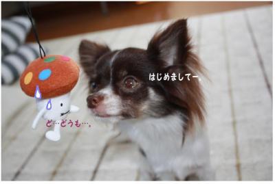 コピー (3) ~ ドコモ