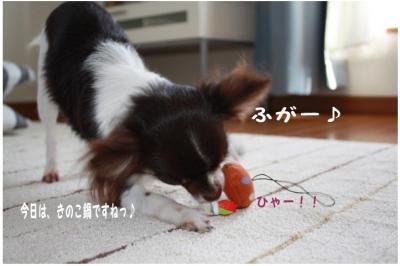 コピー (5) ~ ドコモ