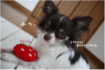 コピー (4) ~ いちごちゃん