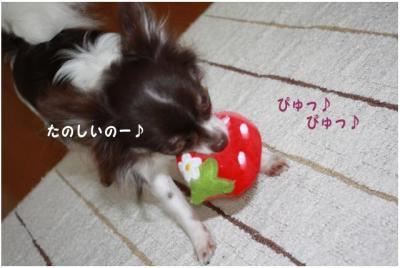 コピー (3) ~ いちごちゃん