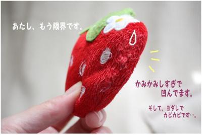 コピー (5) ~ いちごちゃん2
