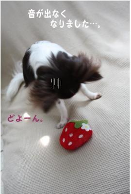 コピー (4) ~ いちごちゃん2