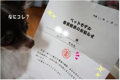 コピー (5) ~ モデル
