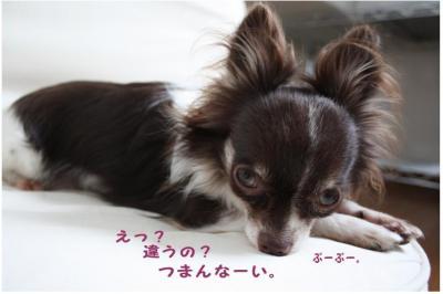 コピー (7) ~ モデル